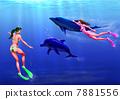 海豚 女性 女 7881556