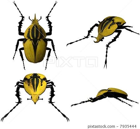 3DCG(Auberturu甲蟲) 7935444