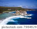 bird island, blue water, marine 7964629