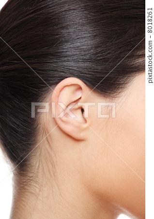 Young caucasian woman ear. 8018261