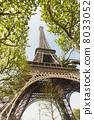 从树之间看见的埃佛尔铁塔 8033052