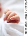 寶貝的手 8046902