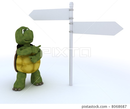 tortoise with sign post 8068687