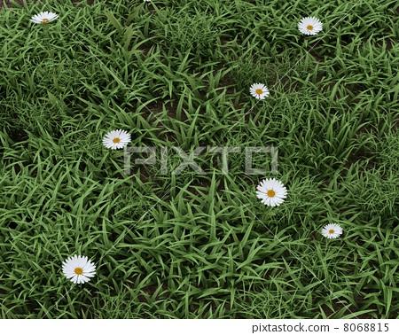 Spring flowers in bloom 8068815