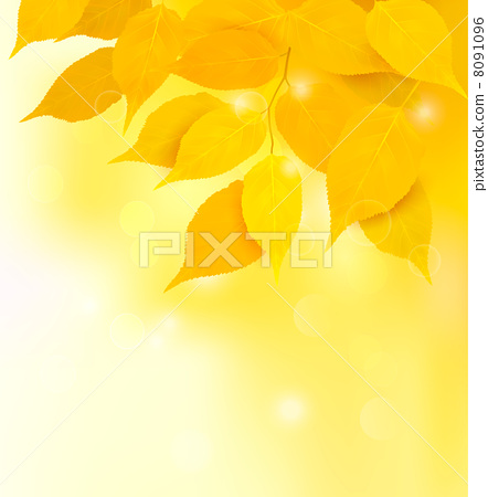 Autumn background with yellow leaves. Back to school. Vector ill 8091096