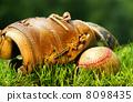 童年 球 棒球 8098435
