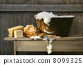 Old wash tub with soap on bench 8099325