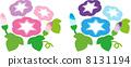 牽牛花粉紅色藍色 8131194