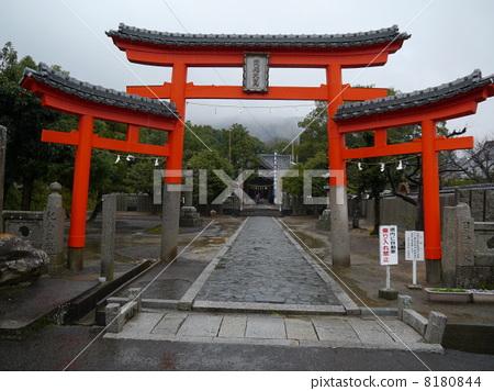 Emperor Temple No. 79 8180844