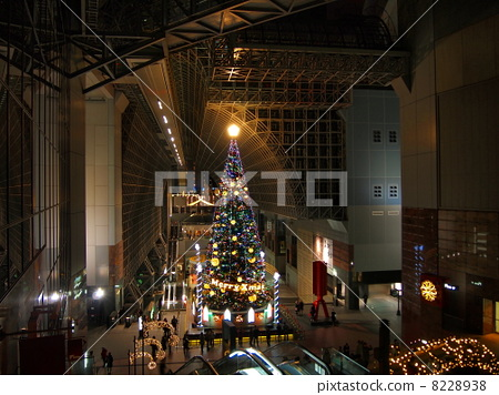 在京都駐地的聖誕樹 8228938