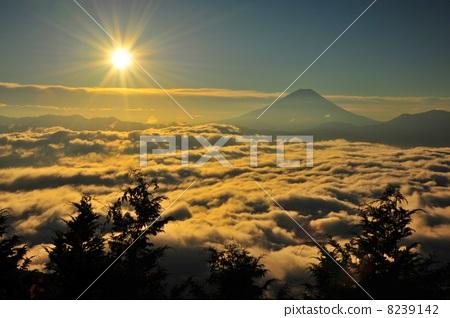 Sunrise on the cloud and Mt. Fuji 8239142