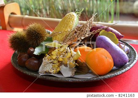 秋天蔬菜水果 8241163