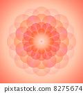 ดอกส้มไล่สี 8275674