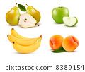 Big group of different fruit. Vector. 8389154