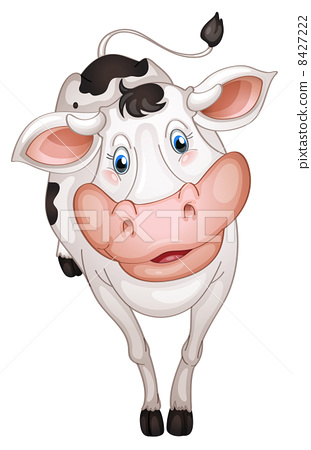 Cow 8427222