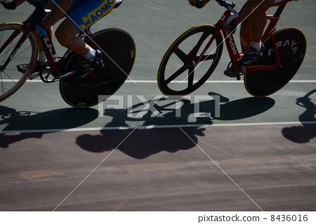 자전거 8436016