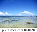 The beach of Guam 8440283