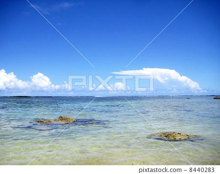 The beach of Guam 8440283