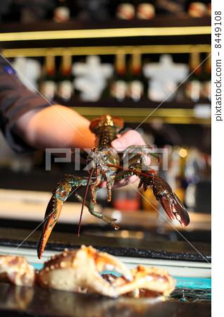 living marine cancer in hand restaurateur 8449108