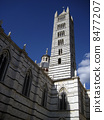 Bell tower of Siena Cathedral 8477207