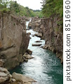 水河 8516960
