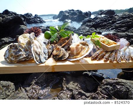 Shellfish shell 8524370