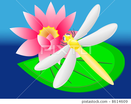 dragonfly and lily 8614609