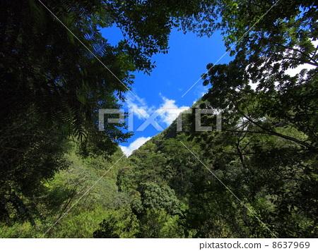 Hawaii Manoa Holes 8637969