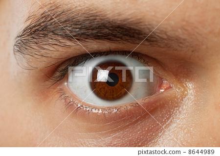 close-up shot of young man brown eye 8644989
