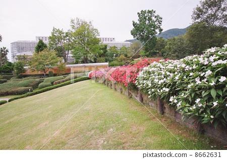 Botanical park 8662631