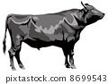 和牛 8699543