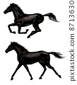 equine, horse, hurtle 8713630