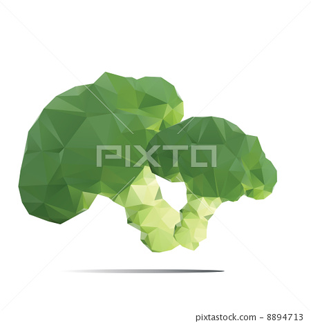 illustration of a broccoli on a white background 8894713