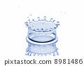 Aqua Crown 8981486