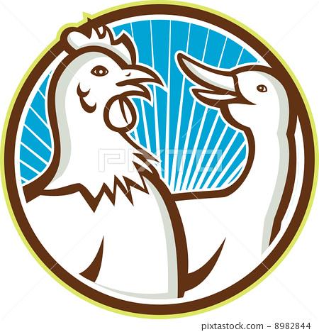 Chicken With Goose Cartoon 8982844