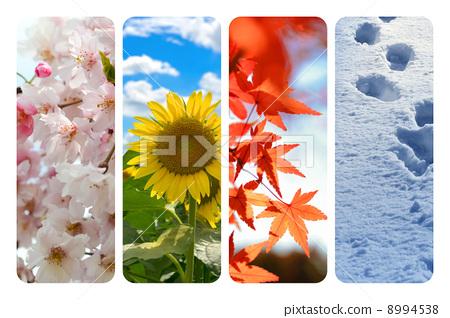 春夏秋冬 8994538