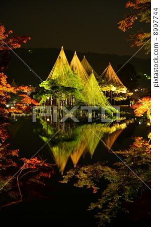 Kenrokuen in autumn leaves light up 8997744