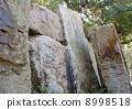 垂直石组 8998518