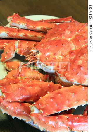 King crab 9016181