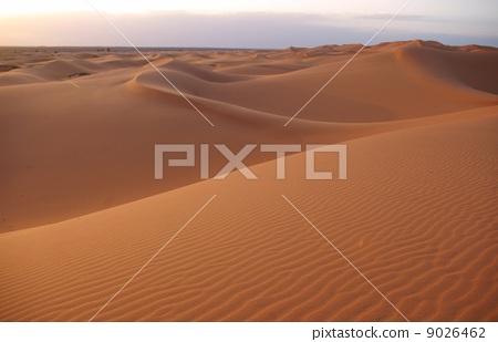 撒哈拉 撒哈拉大沙漠 廣闊的荒野 9026462