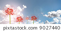 Higishi Flower Multiple Blue Sky Cloud Backlight Cut Out Synthesis 9027440