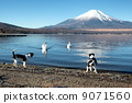 world heritage, lake, lakeside 9071560