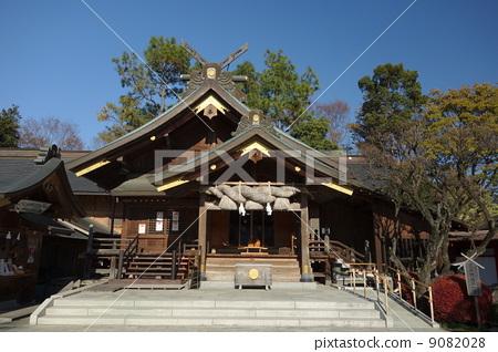 Blue sky and Izumo Taisha Sagami shrine main hall 9082028