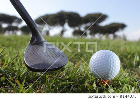Golf putter and ball 9144373
