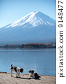 สุนัข,สุนัช,ภูเขาฟูจิ 9148477
