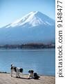 dog, dogs, mountain fuji 9148477