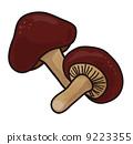 mushroom, mushrooms, shiitake mushroom 9223355