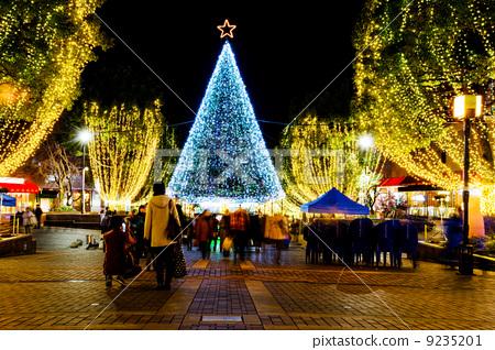 Tama center illumination Christmas tree 9235201