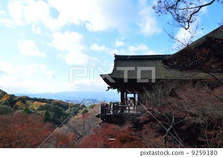 "National Treasures · ""Shimizu's Stage"" (Kiyomizu Temple / Kyoto City Higashiyama Ward Shimizu) 9259180"