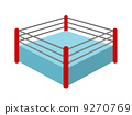 professional wrestling, ring, ling 9270769